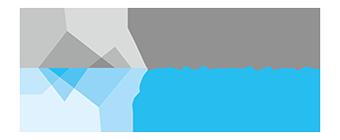 DS logo transparent